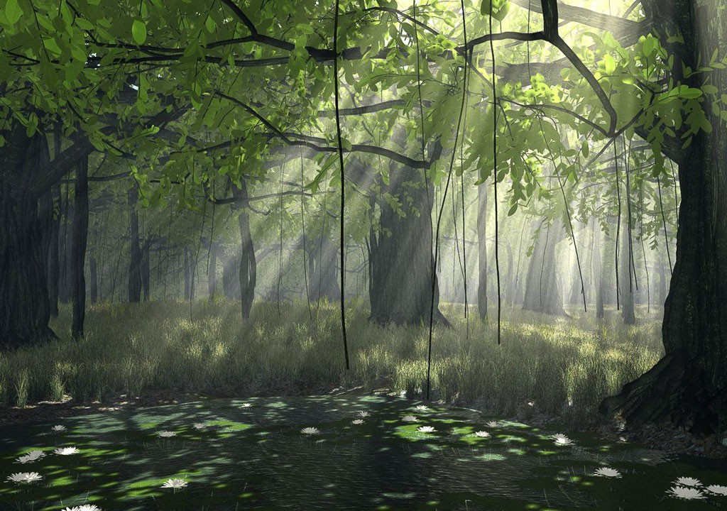 Sunlight through a forest